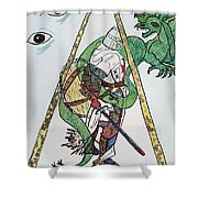 Sometimes The Dragon Wins Shower Curtain