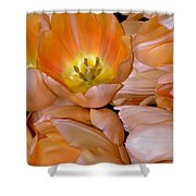 Somewhat Peachy Shower Curtain