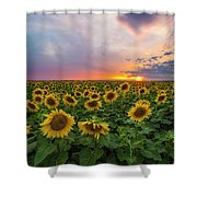 Somewhere Sunny  Shower Curtain