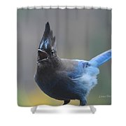 Song From The Heart Shower Curtain