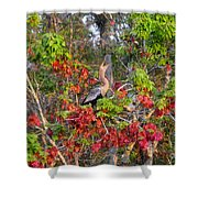 Song Of The Anhinga Shower Curtain