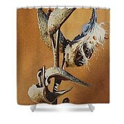 Song Sparrow And Milkweed Shower Curtain