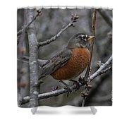 Songbird Evening Shower Curtain