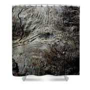 Songlines Series Shower Curtain