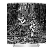 Songs In The Woods Shower Curtain