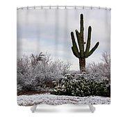 Sonora Desert Winter Shower Curtain