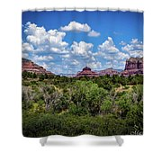 Sonoran Countryside Shower Curtain