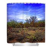Sonoran Desert H1819 Shower Curtain