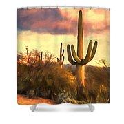 Sonoran Desert Morn Shower Curtain