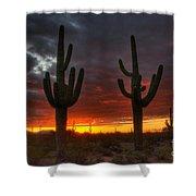 Sonoran Desert Sunrise 1 Shower Curtain