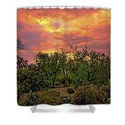 Sonoran Desert Sunset H44 Shower Curtain