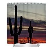 Sonoran Desert Sunset Shower Curtain