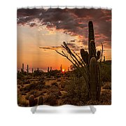 Sonoran Summer  Shower Curtain