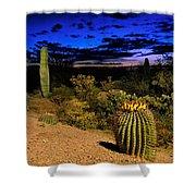 Sonoran Twilight Shower Curtain