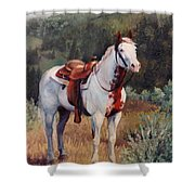 Sophie Flinders Paint Mare Horse Portrait Painting Shower Curtain