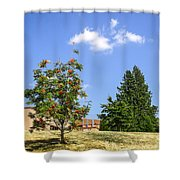 Sorb-tree Shower Curtain