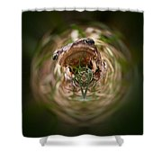 Sorry Said The Frog 1 Shower Curtain
