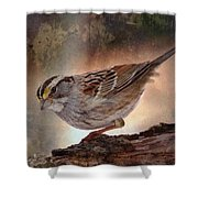 Soul Catcher...   Shower Curtain