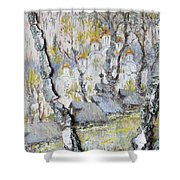 Soul Of Russia Shower Curtain