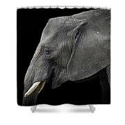 Soul Of The Planet, No. 3 Shower Curtain
