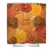 Soul Sparks Shower Curtain