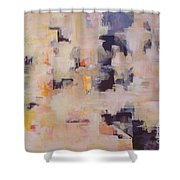 Soulclouds Top Of The City Shower Curtain