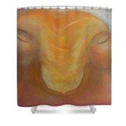 Soulmates Shower Curtain