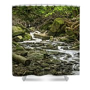 Sounds Of A Mountain Stream Shower Curtain