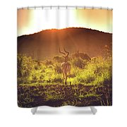 South Africa At Its Finest  Shower Curtain
