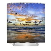 South Beach 12260 Shower Curtain