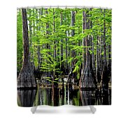 South Carolina Low Country Shower Curtain
