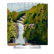 South Carolina Waterfall Shower Curtain