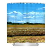 South Dakota Summer Shower Curtain