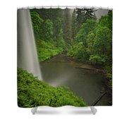 South Falls Vista Shower Curtain
