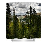 South Lake Through The Pines Shower Curtain