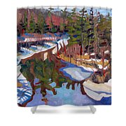 South Magnetawan Midday Shower Curtain