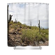 South Mountain2 Shower Curtain