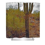 South Mountain6 Shower Curtain