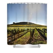 South Napa Valley Morning Shower Curtain