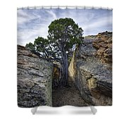 South Of Pryors 2 Shower Curtain by Roger Snyder