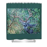 South Texas Deer In Thick Brush Shower Curtain