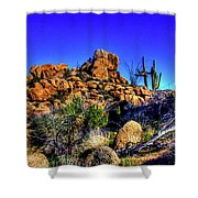 Southbound On Us 93 Shower Curtain