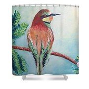 Southern Bee-eater Shower Curtain