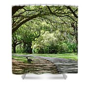 Southern Bench Shower Curtain