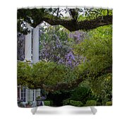 Southern Columns Shower Curtain