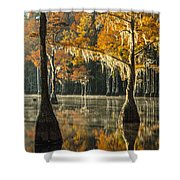 Southern Gold Shower Curtain