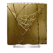 Southern Jewels Shower Curtain