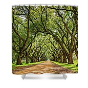 Southern Lane 5 Shower Curtain