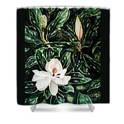 Southern Magnolia Bud And Bloom Shower Curtain