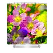 Southern Missouri Wildflowers 1 - Digital Paint 1 Shower Curtain